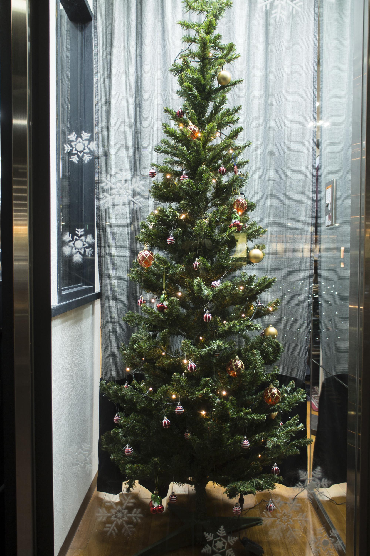テーラーフクオカ新宿店 クリスマスツリー Xmas Christmas -2